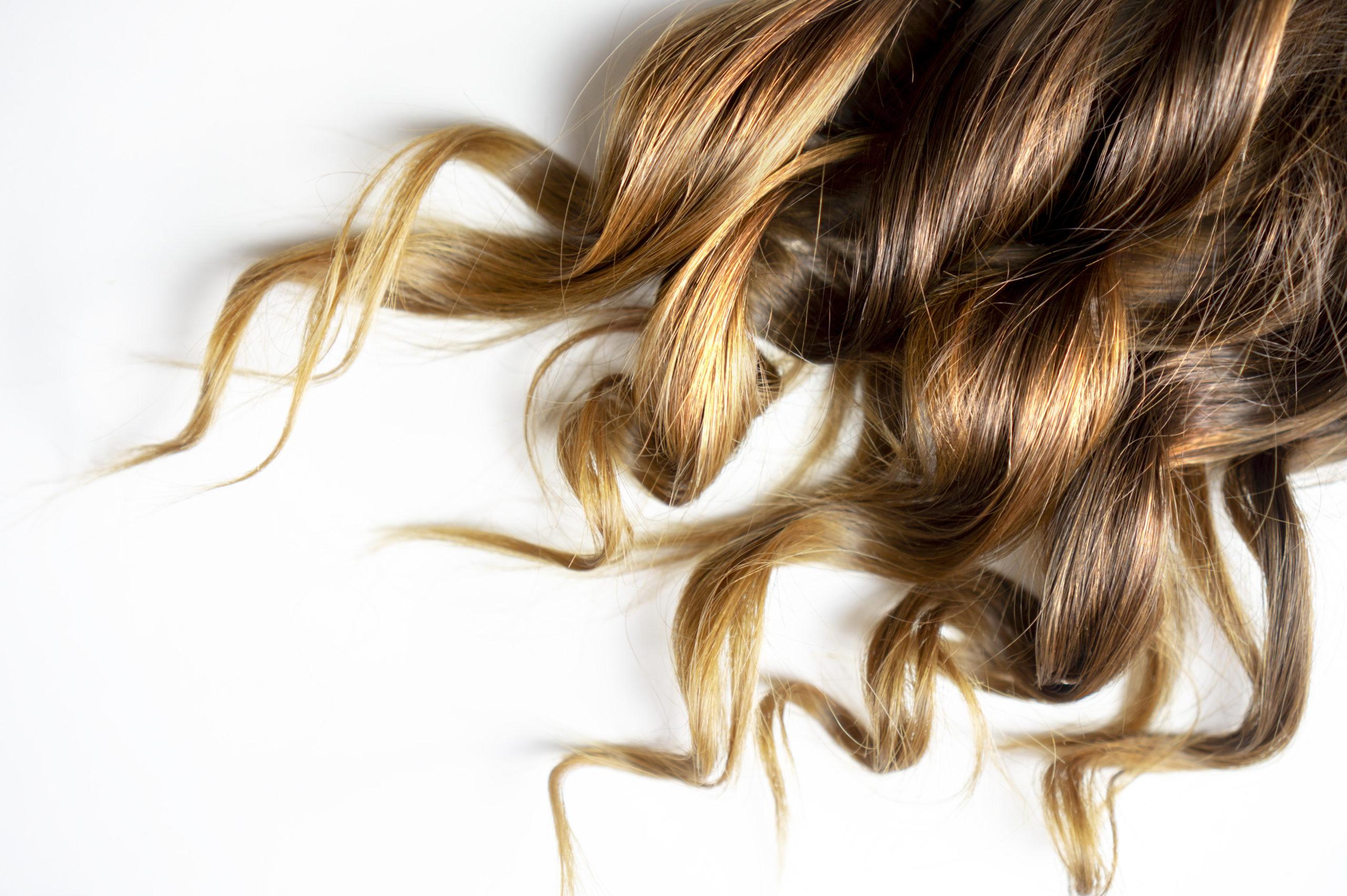 lähikuva ruskeista kiharoista hiuksista valkoista taustaa vasten